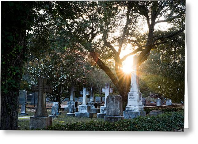 Quaker Cemetery Sunset Greeting Card by Alicia Collins
