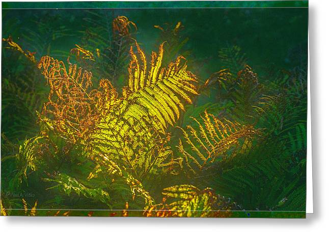 Quantum Fern.... Greeting Card