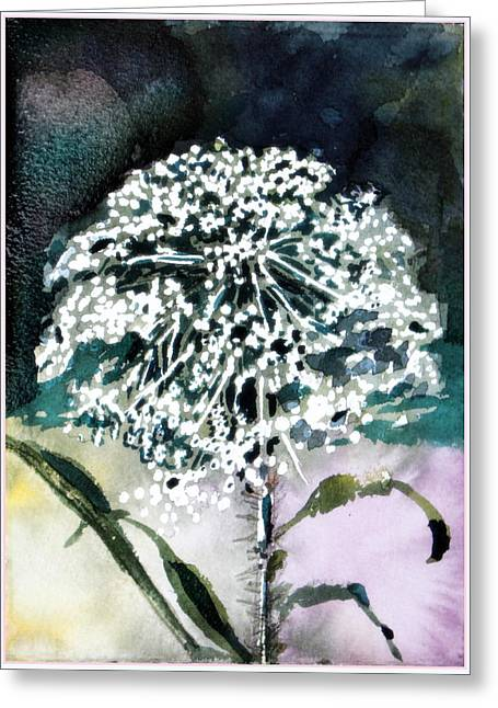 Queen Ann Lace Greeting Card by Mindy Newman