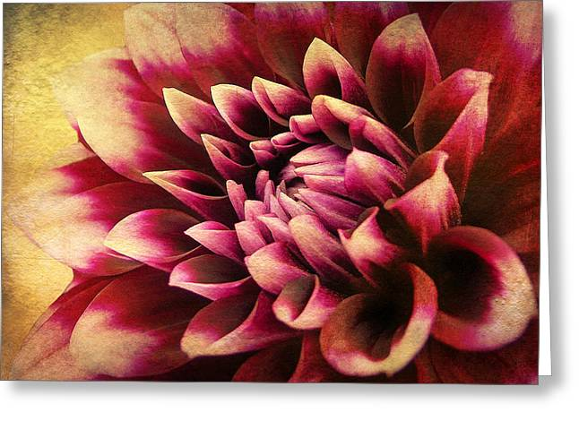 Queen Dahlia Greeting Card by Kathi Mirto