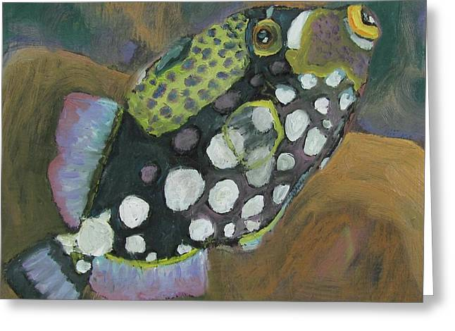 Queen Trigger Fish Greeting Card