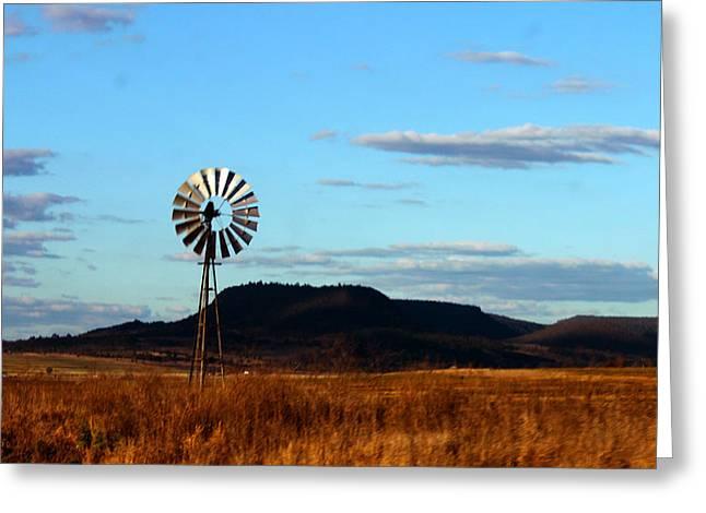 Queensland Windmill Greeting Card by Susan Vineyard