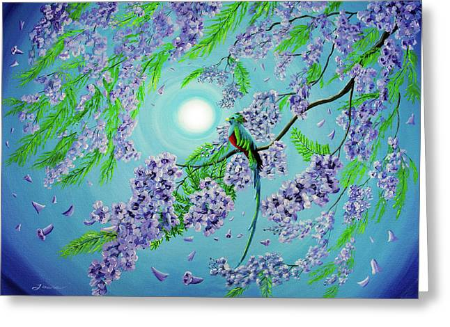 Quetzal Bird In Jacaranda Tree Greeting Card by Laura Iverson