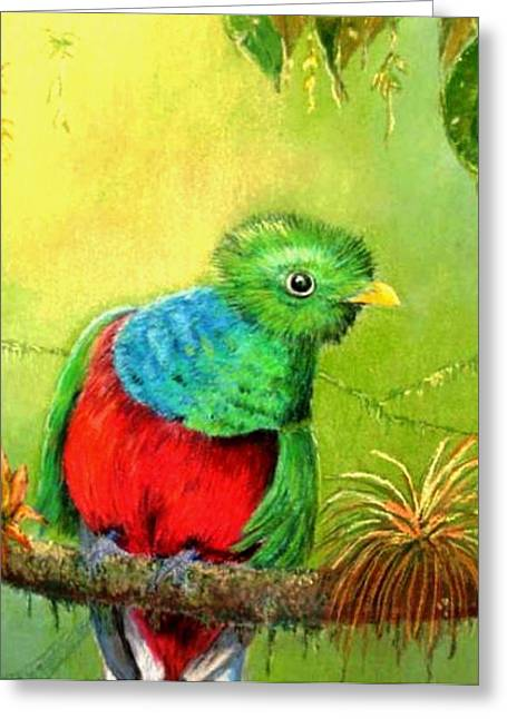 Greeting Card featuring the painting Quetzal by Ceci Watson