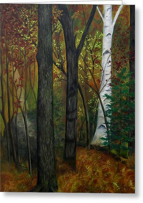 Quiet Autumn Woods Greeting Card