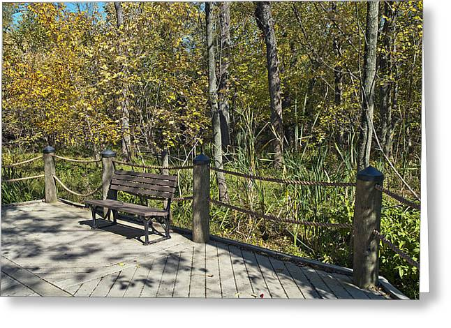 Quiet Bench On Theodore Roosevelt Island Greeting Card