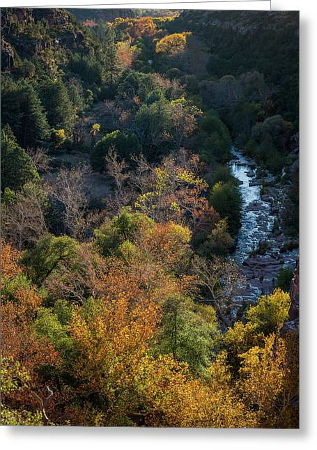 Quiet Canyon Greeting Card