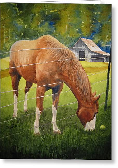 Quiet Comfort Greeting Card by Shirley Braithwaite Hunt
