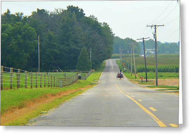 Quiet County Road In Early Summer Greeting Card