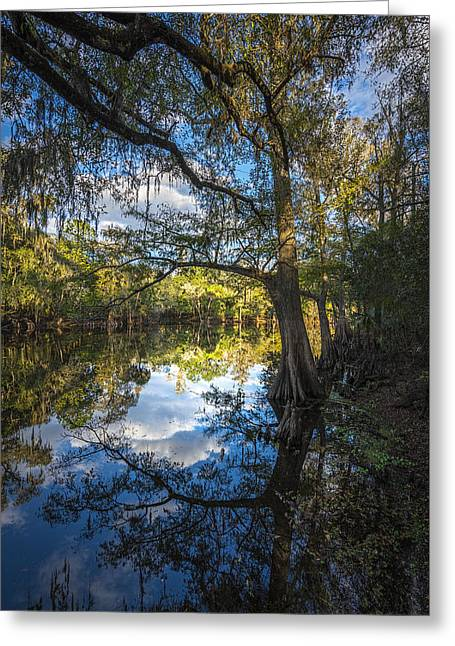 Quiet Embrace Greeting Card by Marvin Spates
