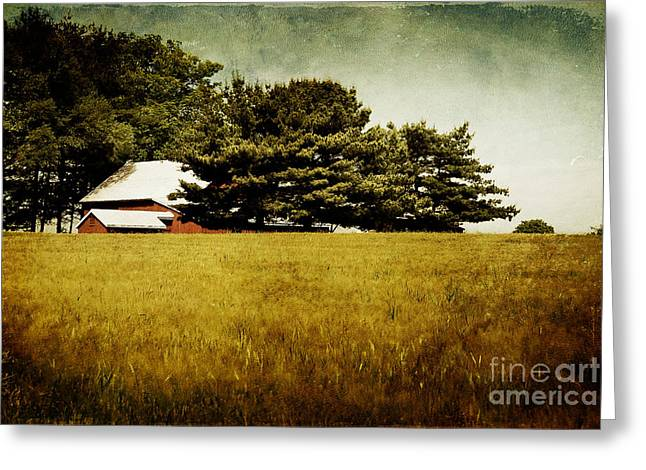 Quiet Greeting Card by Lois Bryan
