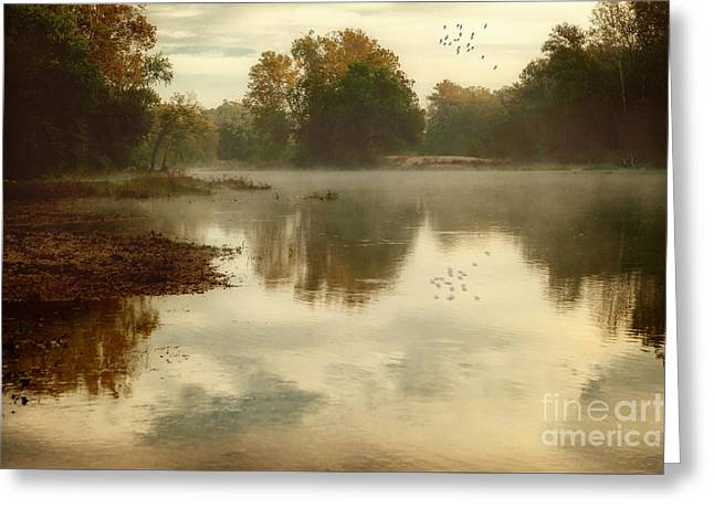 Quiet River Greeting Card by Tamyra Ayles