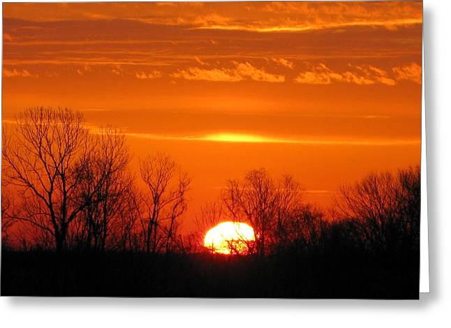 Quiet Sunrise Greeting Card by Martie DAndrea