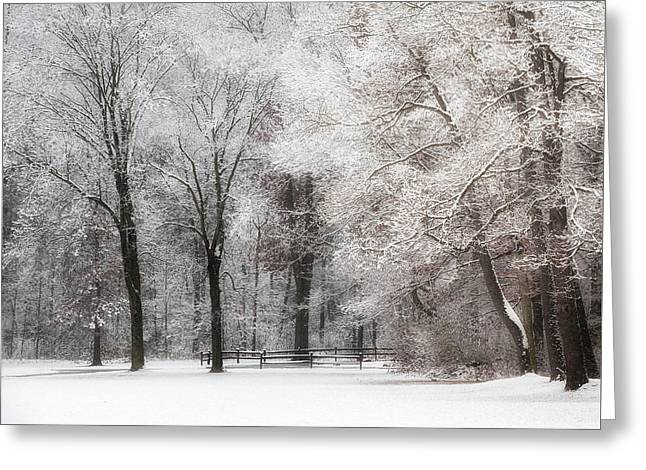 Quiet Winter  Greeting Card