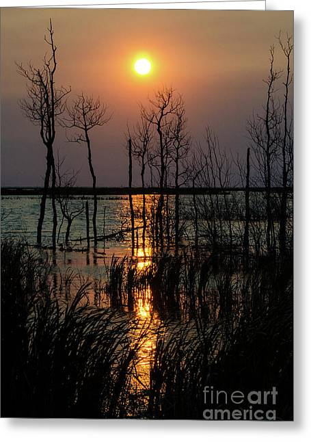 Quill Lake Smoke From A Distant Fire Greeting Card