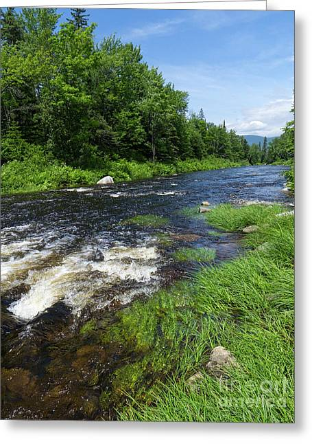 Quill Pond Brook Near Rangeley Maine  -70748 Greeting Card