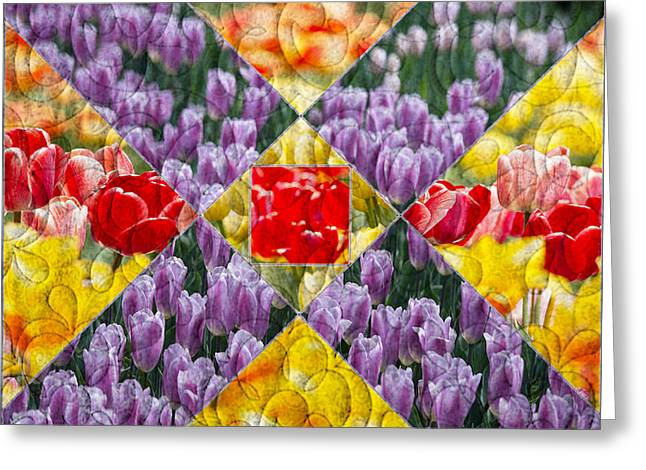 Quilt Block Flowers Greeting Card by Tom Gari Gallery-Three-Photography