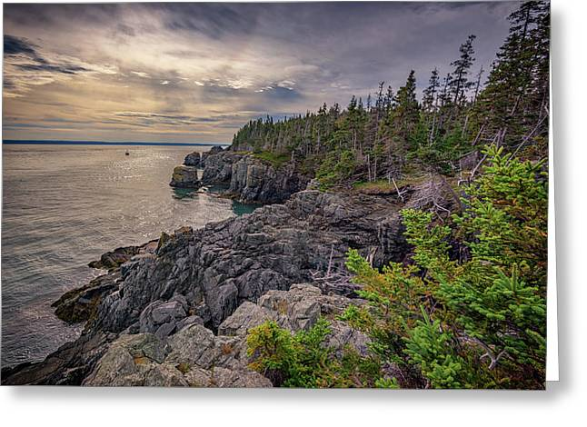 Quoddy Head State Park Greeting Card