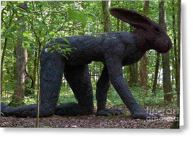 Rabbit At Cheekwood Greeting Card