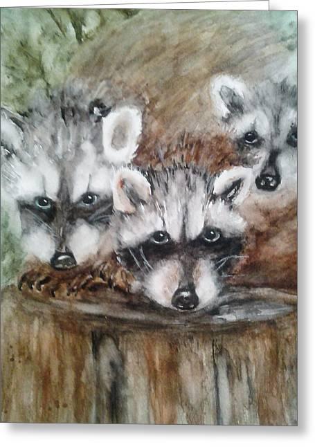 Raccoon Babies By Christine Lites Greeting Card