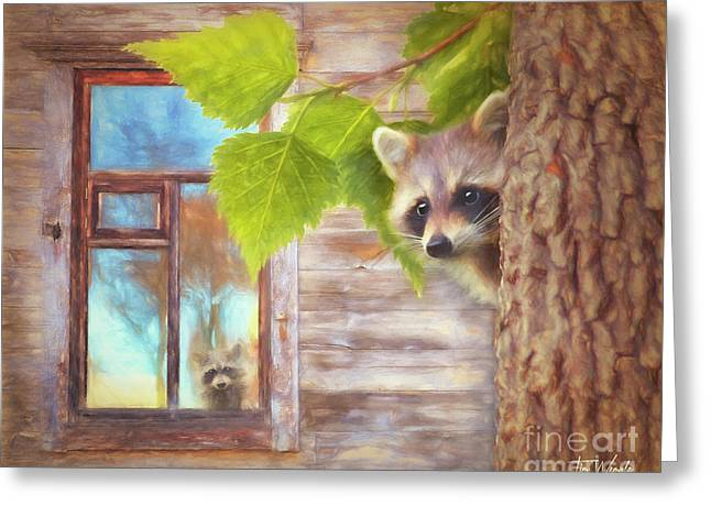 Raccoon Lookout Greeting Card by Tim Wemple