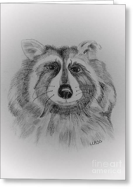 Raccoon Greeting Card by Maria Urso