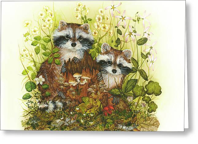Raccoons  Greeting Card by Donna Genovese