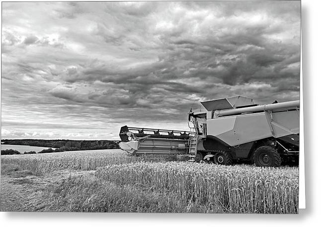 Race Against Time - Harvesting Before The Storm In Black And White Greeting Card by Gill Billington