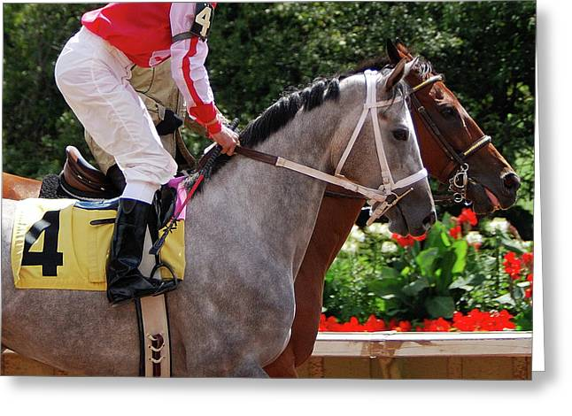Race Horse No 4  2008 Greeting Card