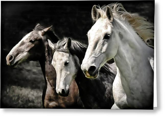 Race To The Finish Greeting Card by Athena Mckinzie
