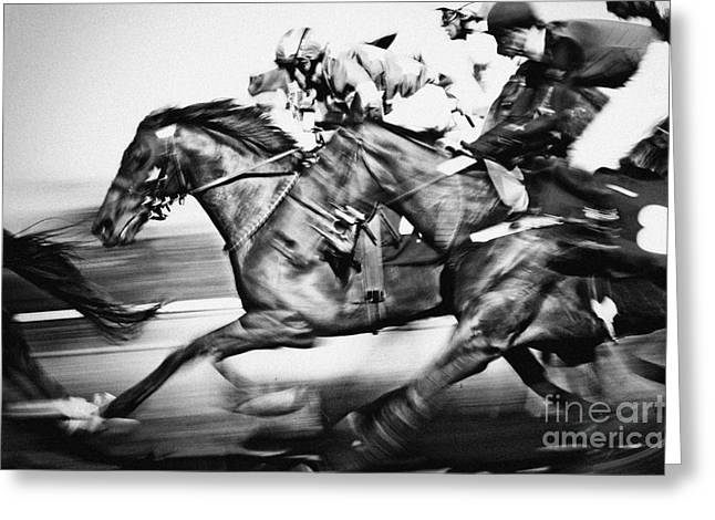 Racing Horses Greeting Card