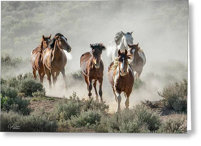 Racing To The Water Hole Greeting Card