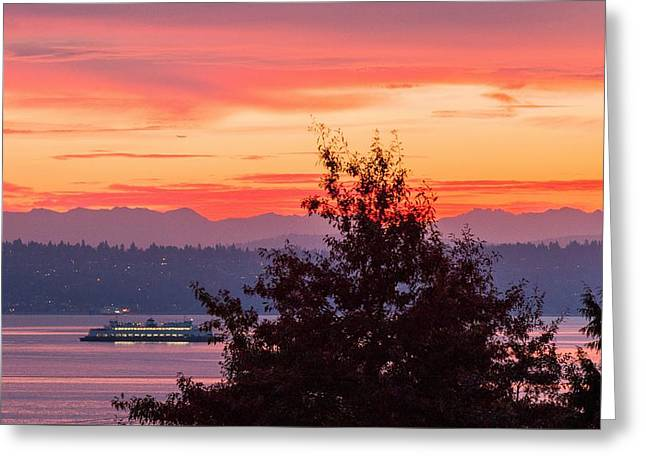 Radiance At Sunrise Greeting Card