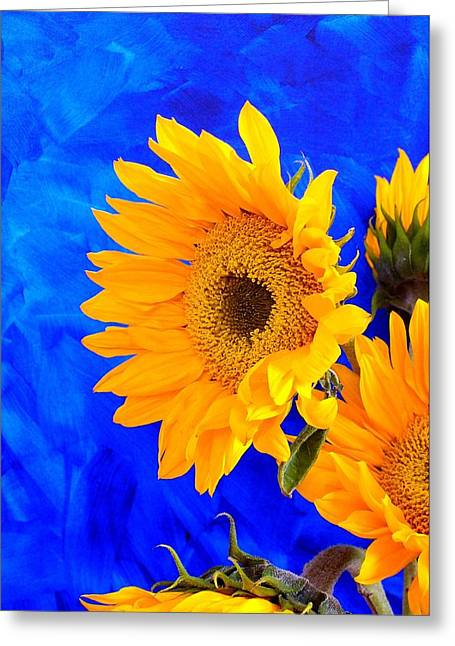 Greeting Card featuring the photograph Radiance by Brenda Pressnall