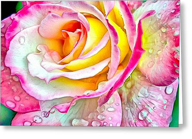 Radiant Rose Of Peace Greeting Card