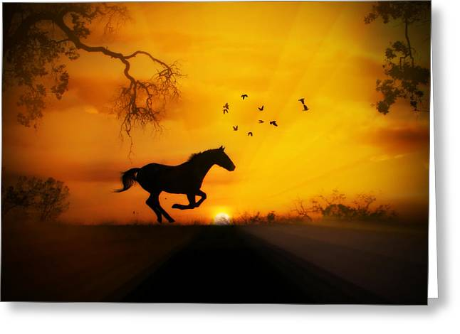 Radiant Run Horse And Sunrise Greeting Card by Stephanie Laird