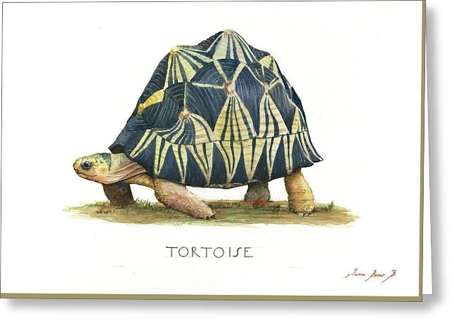Radiated Tortoise  Greeting Card