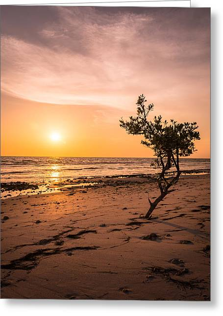 Radiating Greeting Card by Clay Townsend