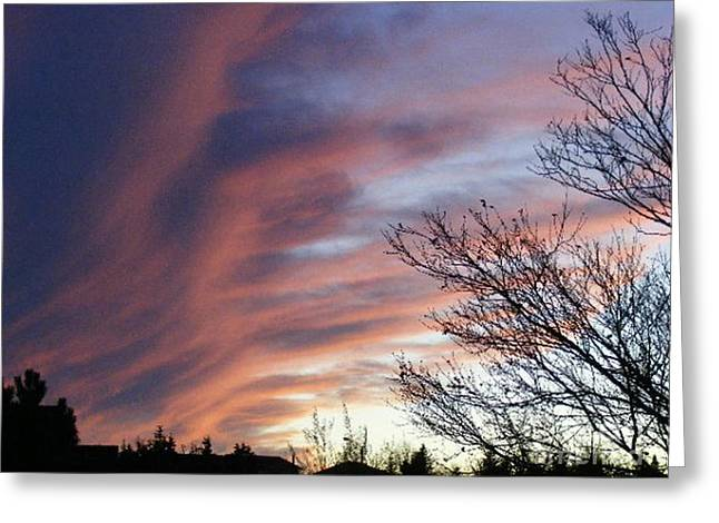Raging Sky Greeting Card by Barbara Griffin