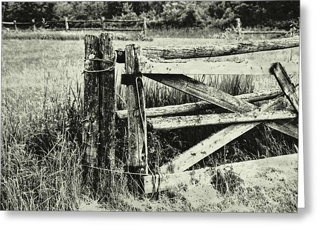 Rail Fence Greeting Card by JAMART Photography