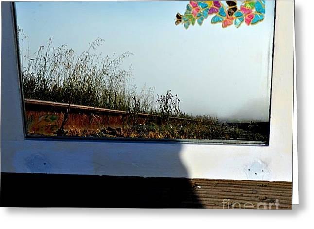 Railroad Mist Greeting Card