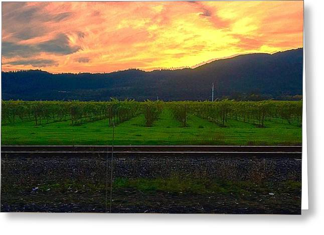 Railroad Sunset Greeting Card