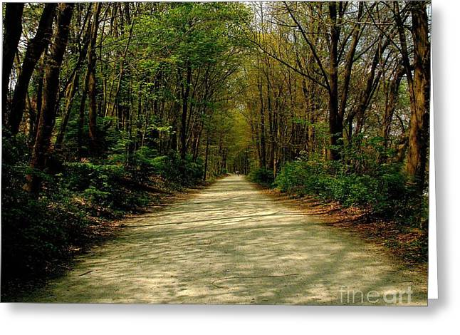 Rails To Trails Greeting Card by Kristine Nora