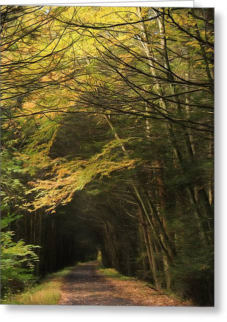 Rails To Trails Greeting Card