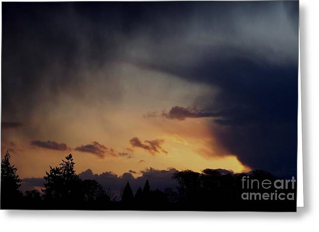 Rain At Sunset Greeting Card by Erica Hanel