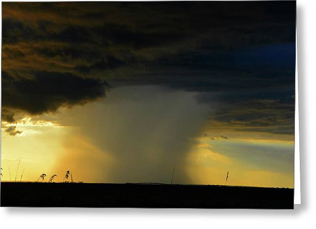 Rain Bomb Greeting Card by David Lee Thompson