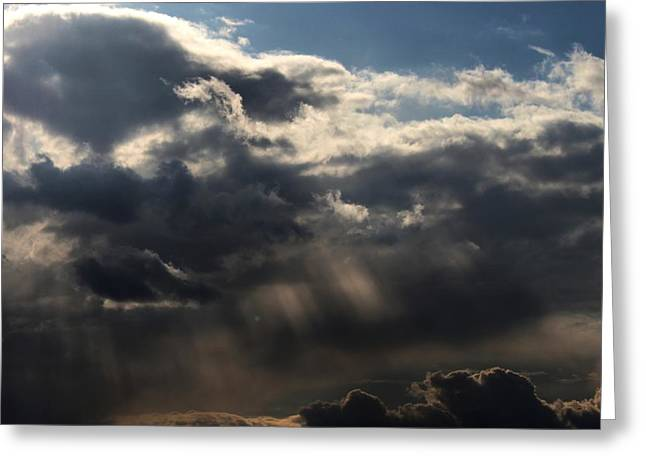 Greeting Card featuring the photograph Rain by Erica Hanel