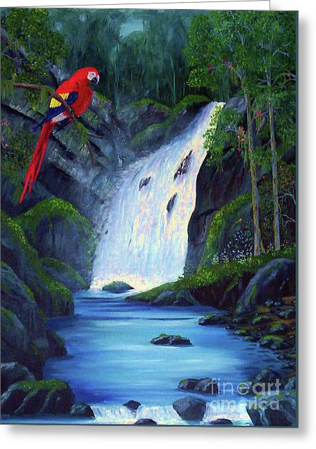 Rain Forest Macaws Greeting Card