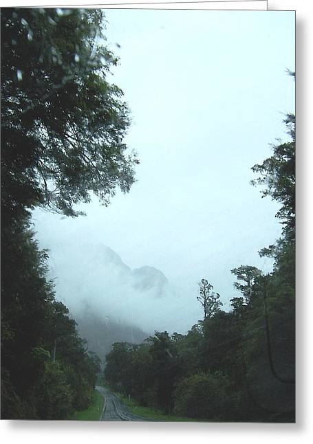 Rain Forest  Greeting Card