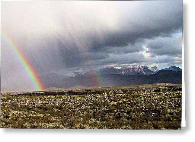 Rain In The Desert Greeting Card by Dennis Ciscel